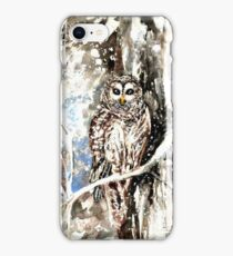 Barred Owl by Hannah Tiffin iPhone Case/Skin