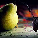 Die Birne und das Blatt von Evita