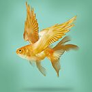 Flying Fish by Vin  Zzep