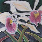 Orchids 4 by rosepepper