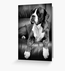 Missing you - Boxer Dogs Series Greeting Card