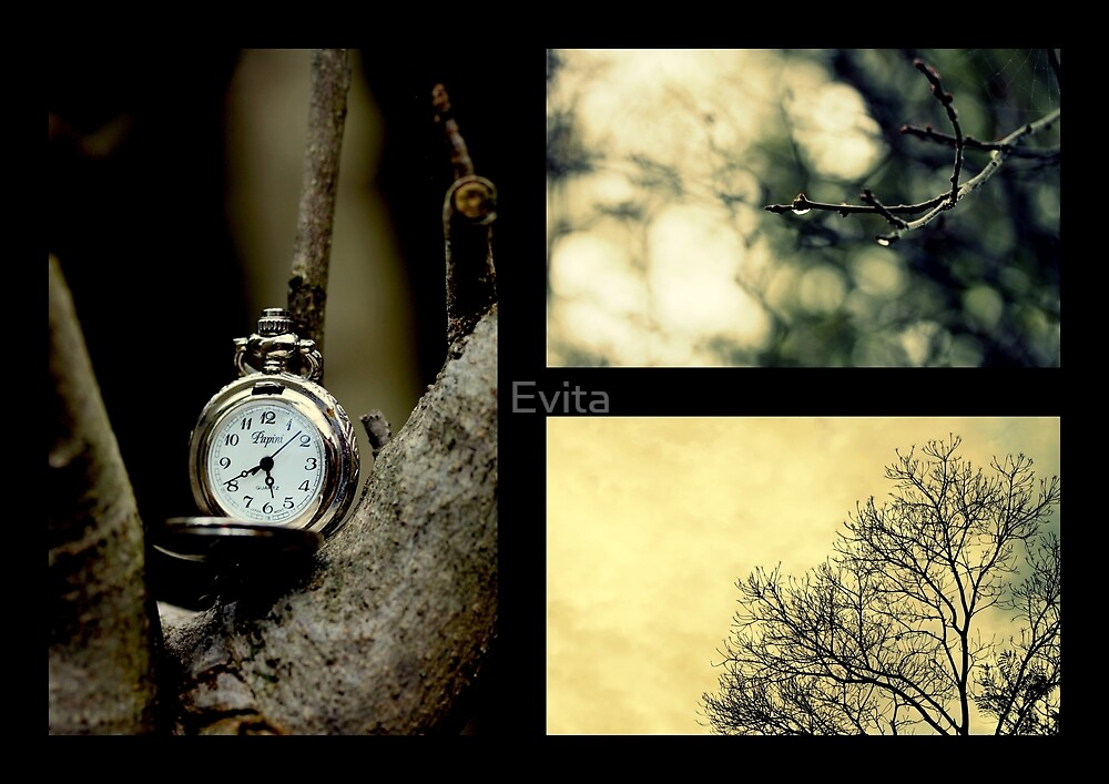 Impressions Of Winter by Evita