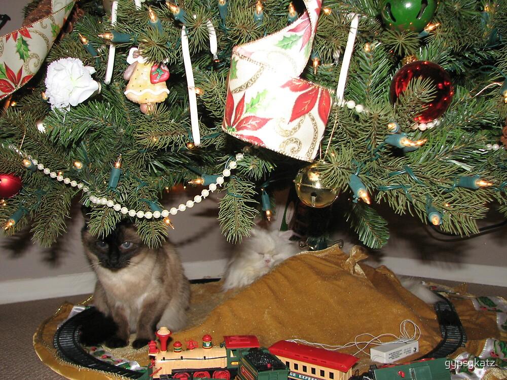 Waiting for Santa by gypsykatz