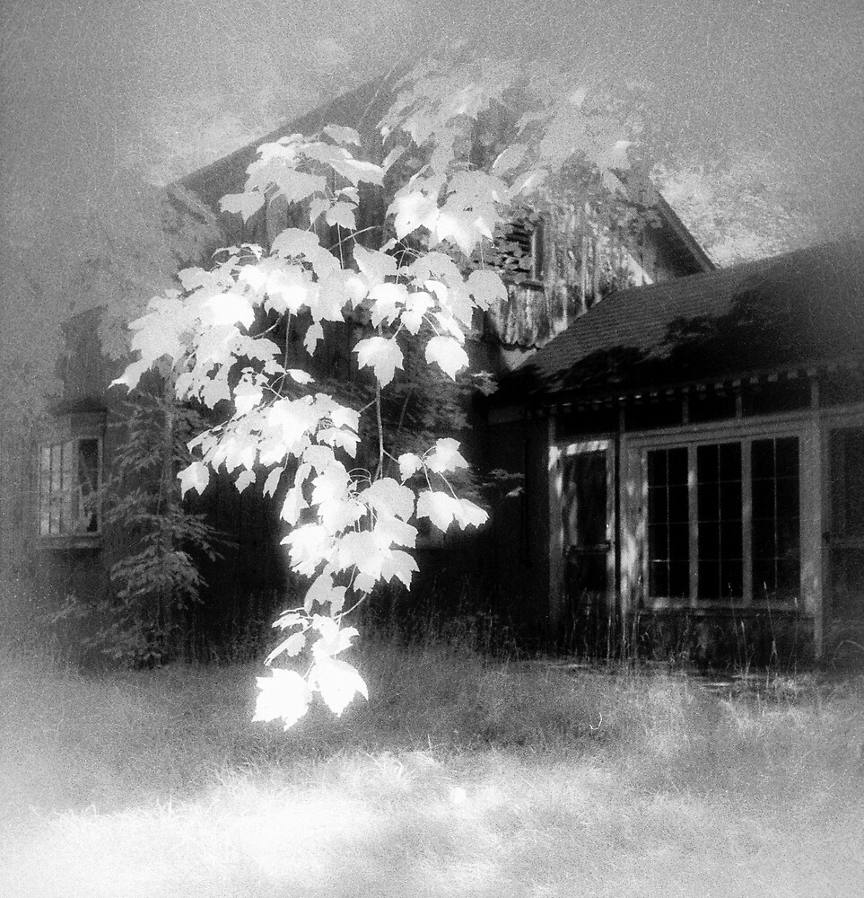 Homestead by ragman