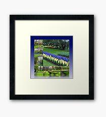 Keukenhof Hyacinths and Tulips Collage Framed Print