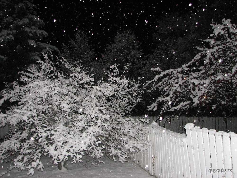 fresh fallen snow by gypsykatz