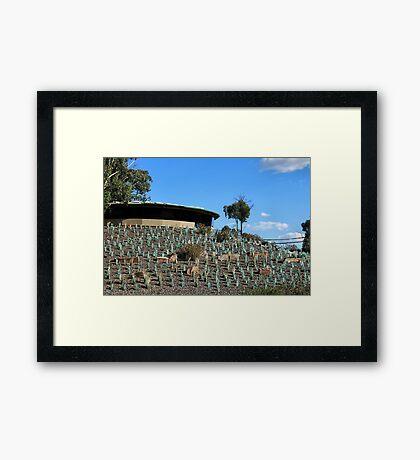 Sugarloaf Lookout - Victoria Framed Print