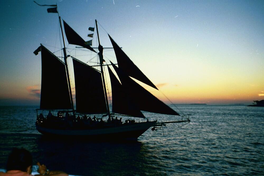 Sunset Sail by Dario  da Silva