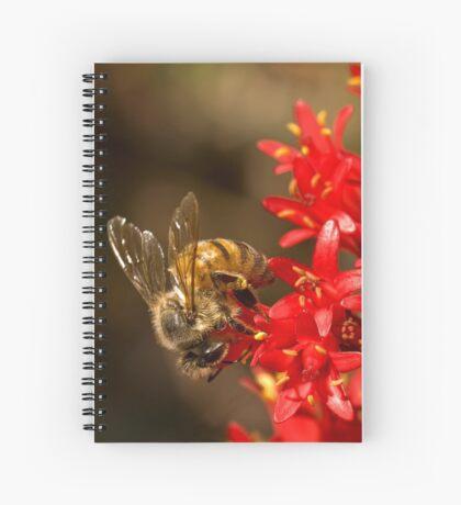 Biene auf scharlachroten Malerpinsel Spiralblock