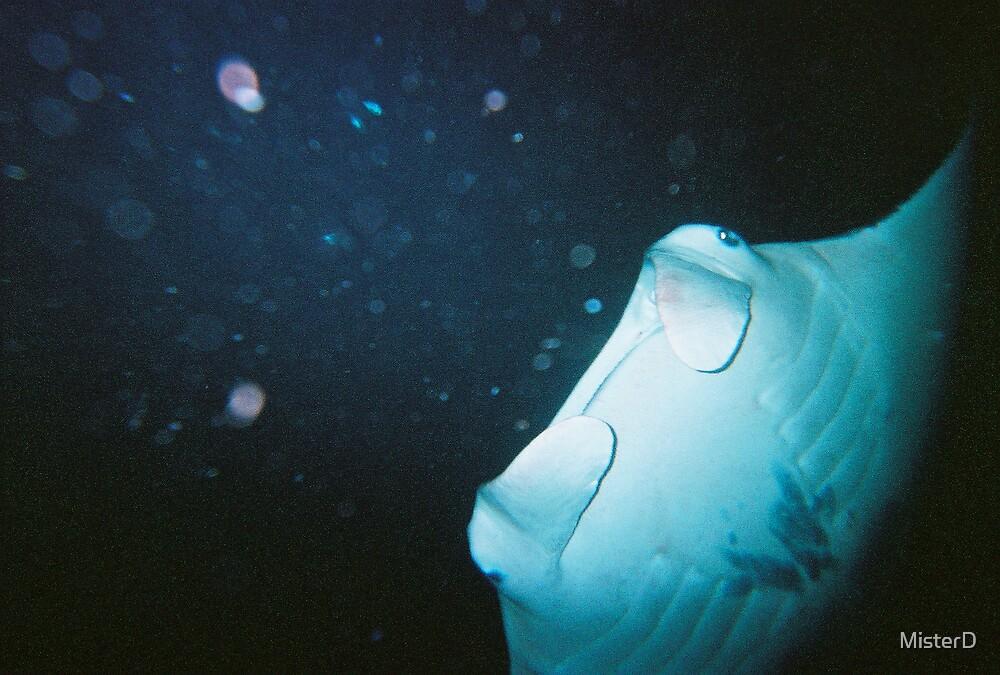 16' underwater kite = Manta Ray in flight by MisterD