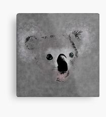 Grey Koala Metal Print