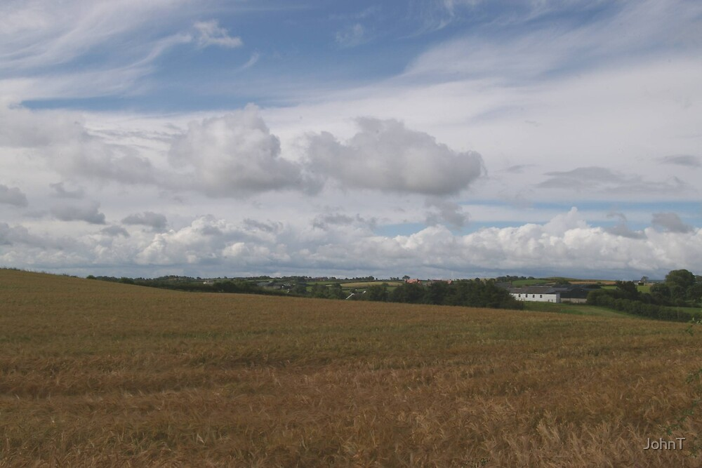 barleyfield1 by JohnT