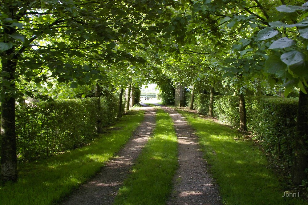 Driveway by JohnT