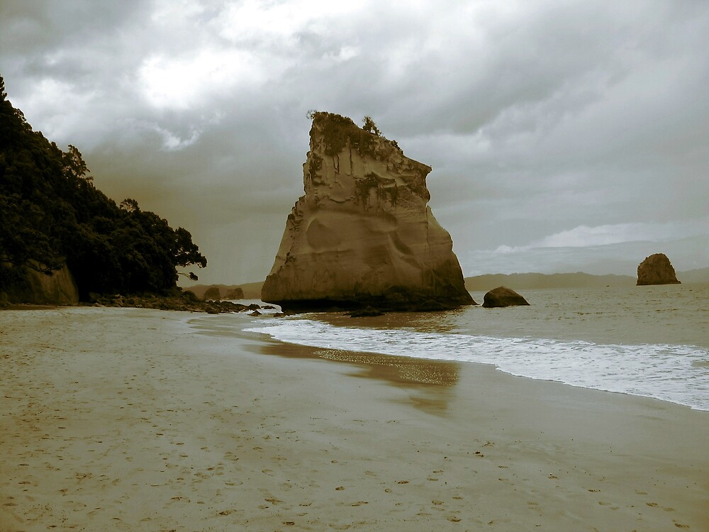 cathedral cove, new zealand by david stevenson