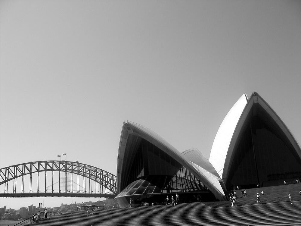 opera bridge by david stevenson