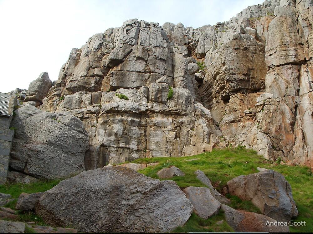 The Rock by Andrea Scott