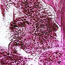 Burgundy Lace by liesbeth