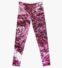 Burgundy Lace Leggings