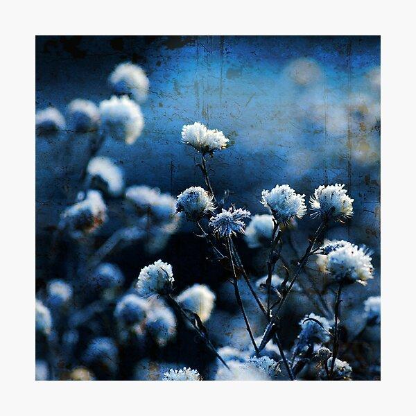 Bokeh bleu Impression photo