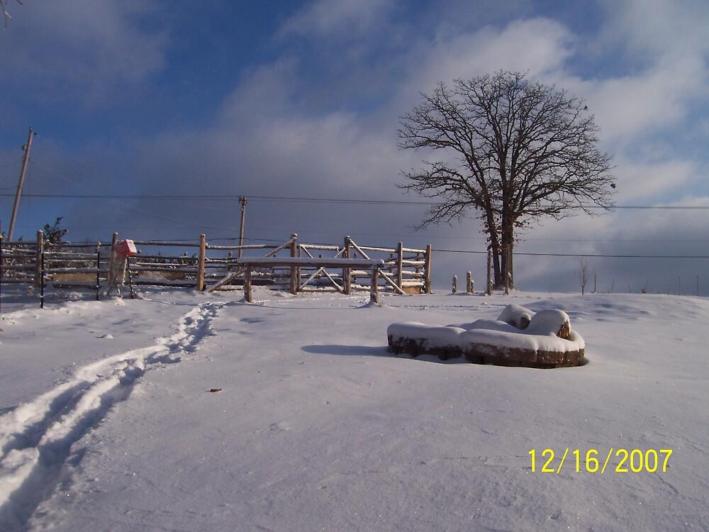 First snow by sedjmom