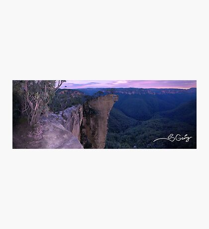Cling on to the one you love! Photographic Print