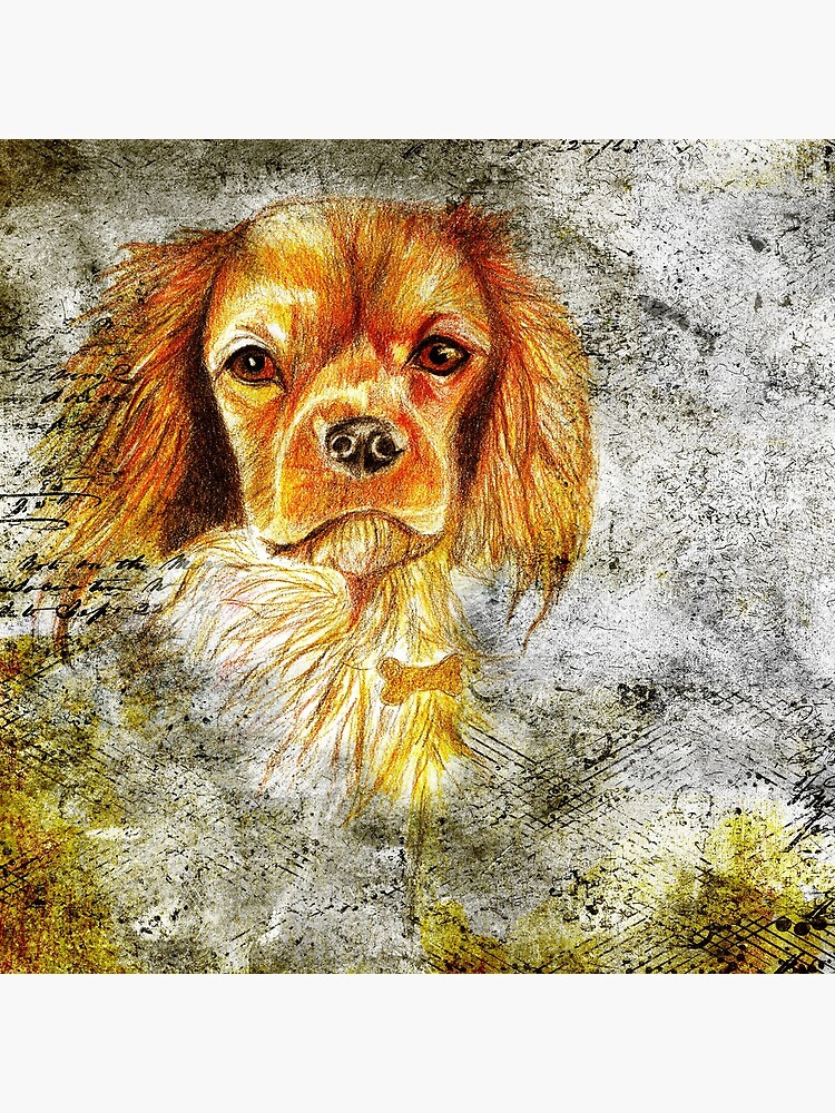 King Charles Spaniel by pjscribble