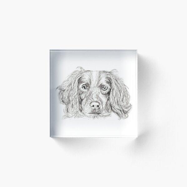 Springer Acrylic Block