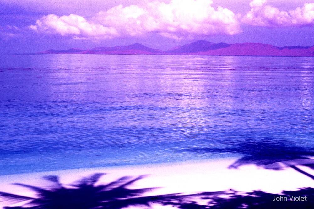 Tropical Beach by John Violet