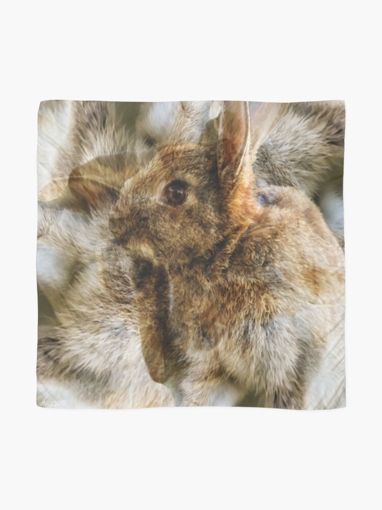 Alternate view of Designs Inspired By Nature: Wild Baby Rabbit Scarf