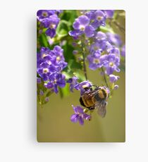 Save The Bumble Bee Metal Print