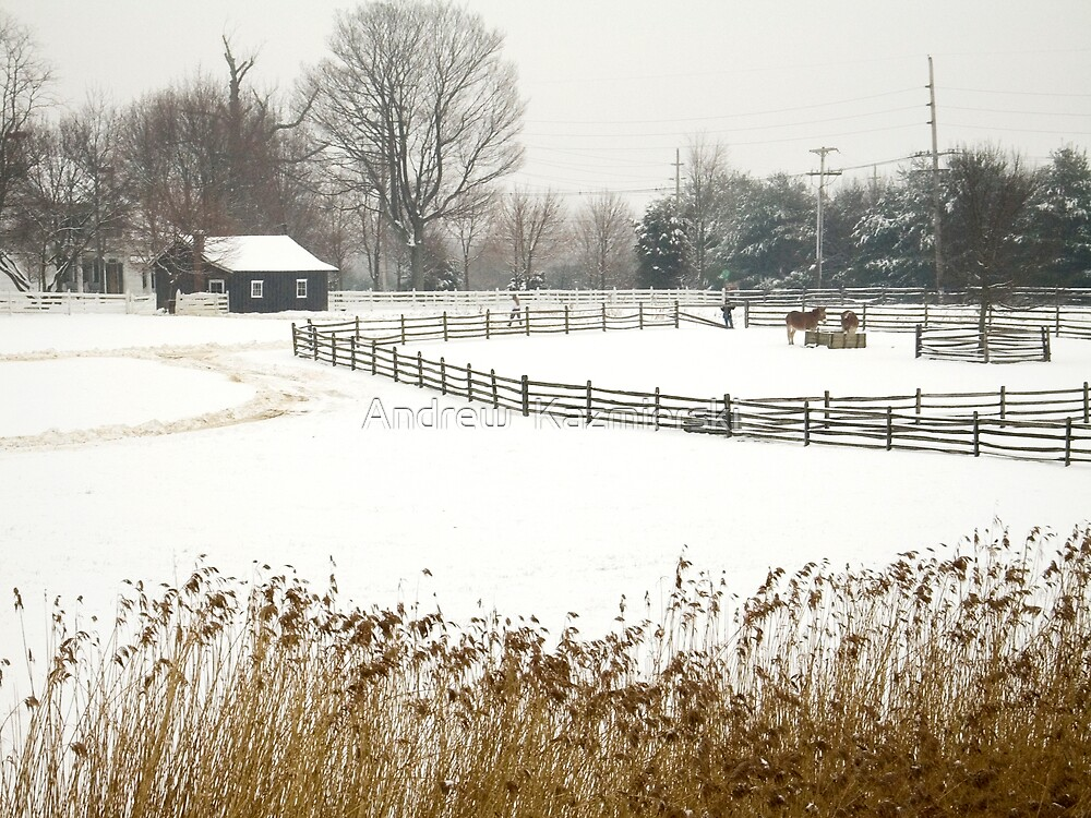 Winter Longstreet  Farm by andykazie