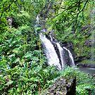 """ Hana Road Waterfalls"" by Randy Gentry"