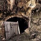 old wine-cellar by hans eder