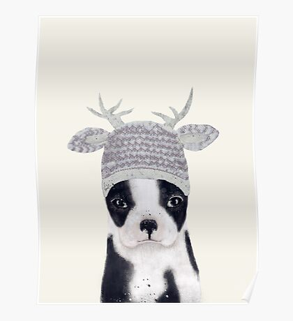little boston ooh deer Poster