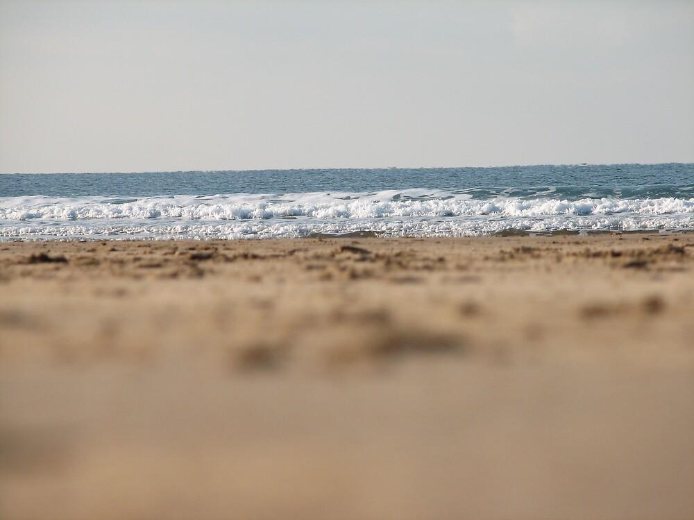 Sea by Lauren Carr