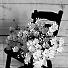 Country Porch Setting in B & W by Sherry Hallemeier