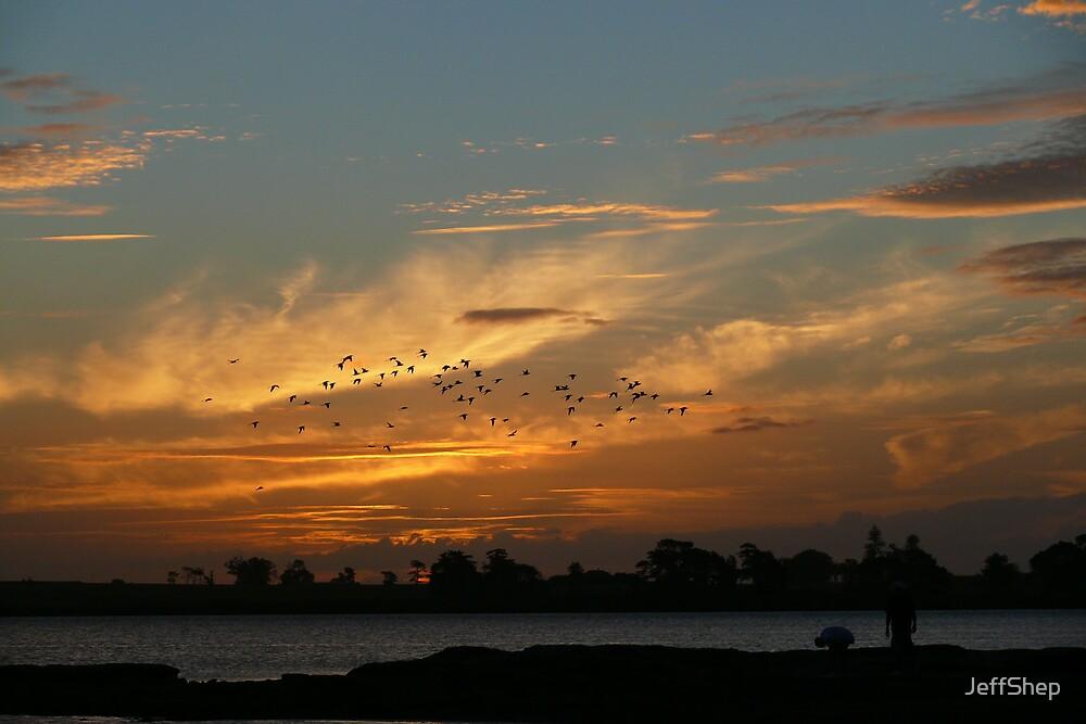 Flight at sunset by JeffShep