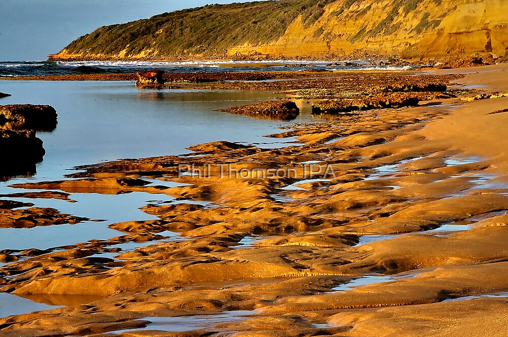 """""""Sculptured Shoreline"""" by Phil Thomson IPA"""