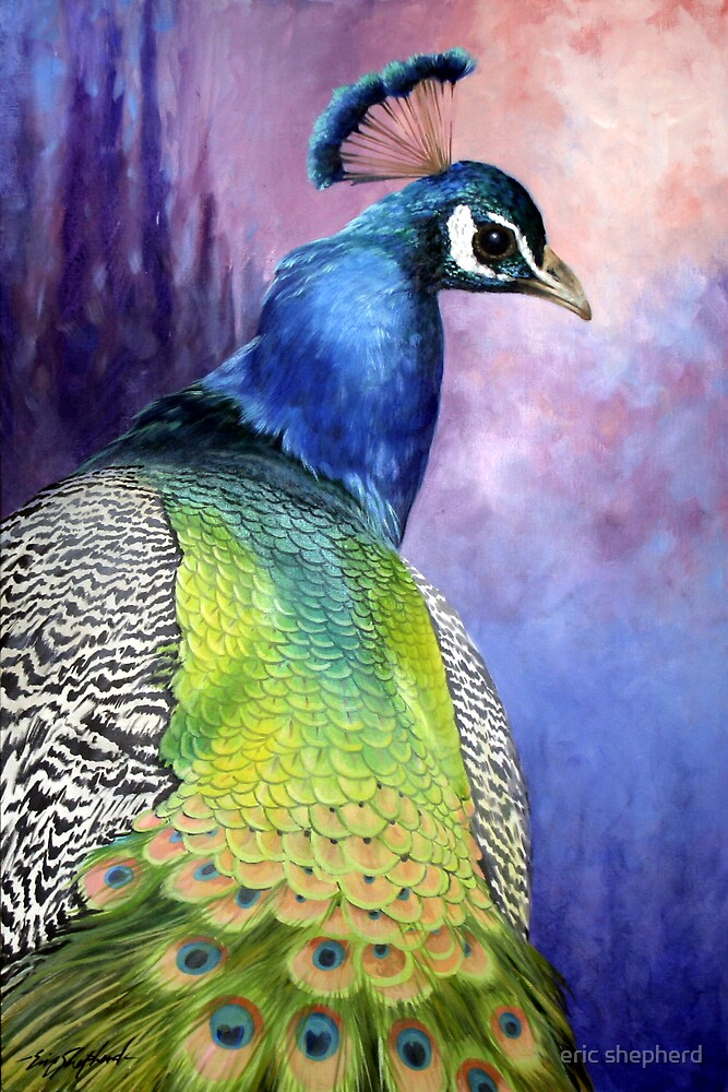 The Gayle Peacock by eric shepherd