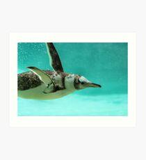 "The Penguin - Fantastic underwater photo of a penguin in ""flight"" Art Print"
