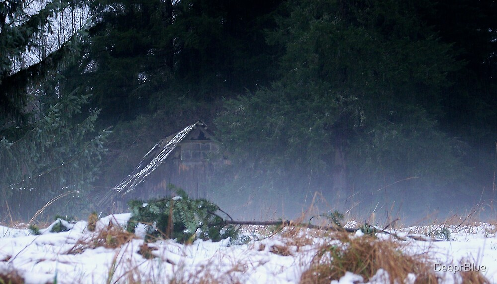 The Thaw 23 & the Abandoned Shack in Fog by DeeprBlue