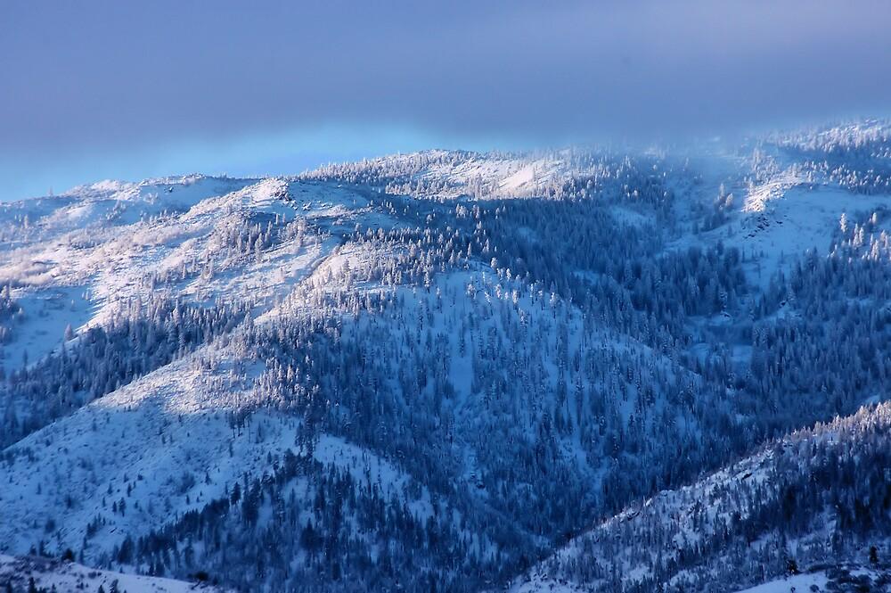 Snow on the Mountain by renofog