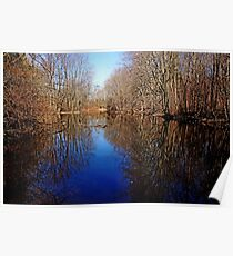 Tranquil Pond Poster