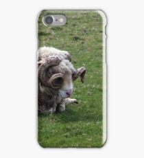 Irish Ram iPhone Case/Skin