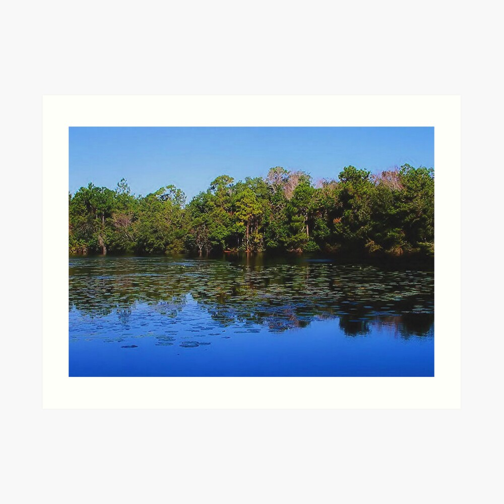 Secluded Lake Art Print