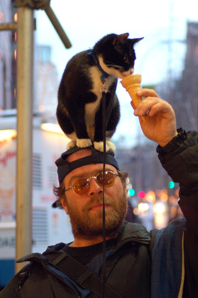 Cat on the hat by doggiedo