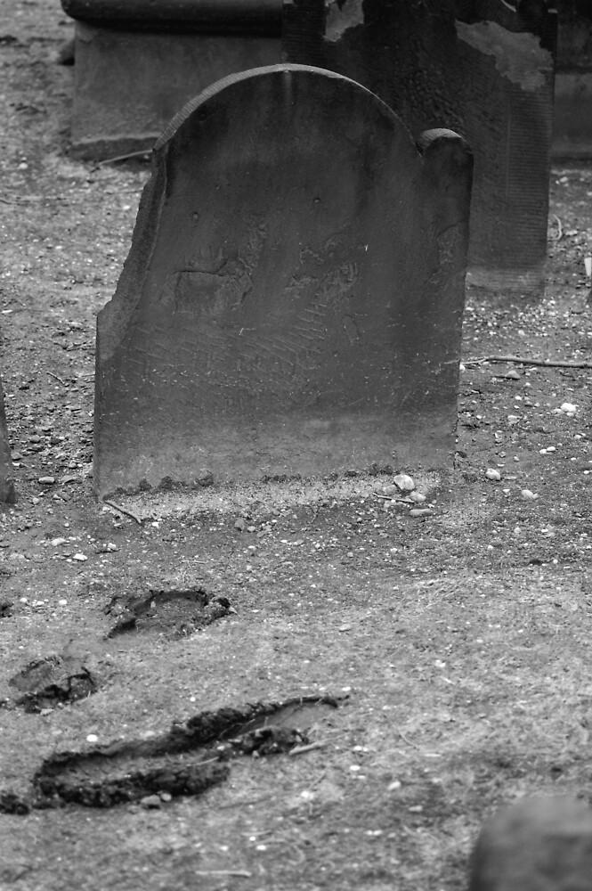 Footprints by doggiedo