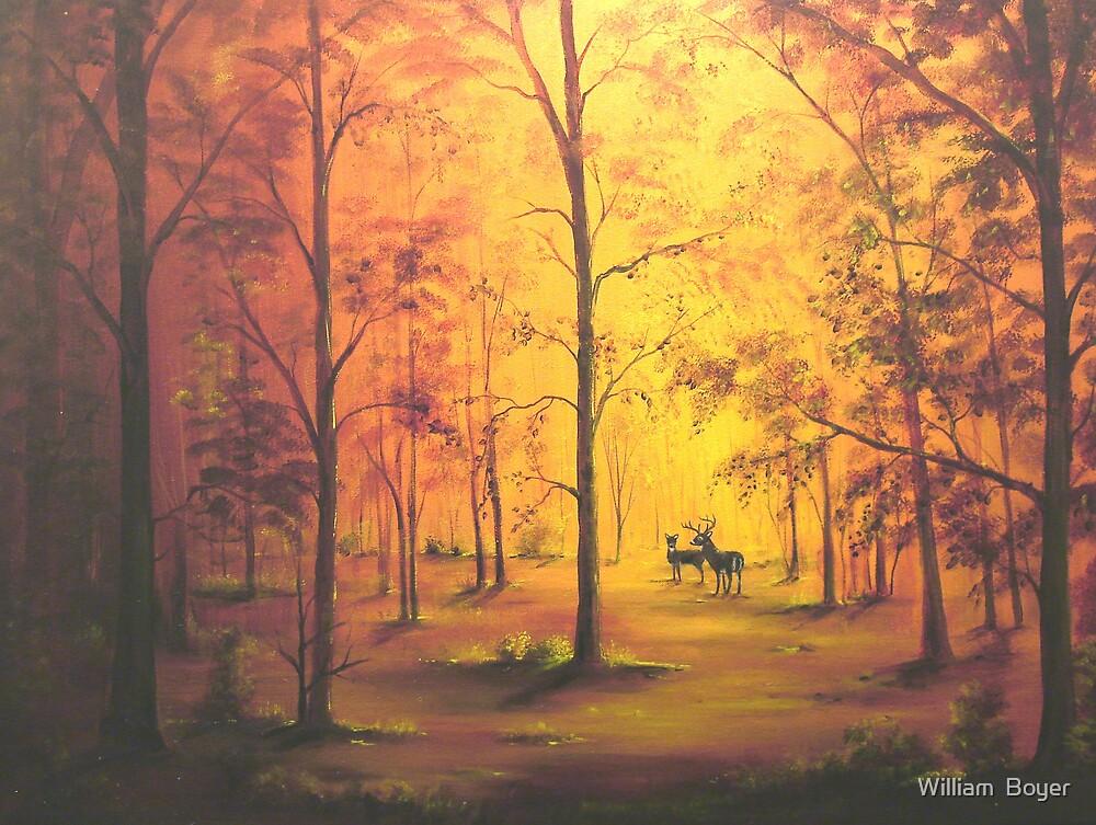 Deer in Autumn by William  Boyer