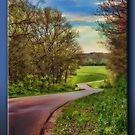 The Long and Winding Road by Sheryl Gerhard