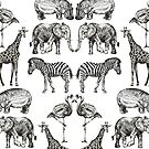 Couples on Safari by Nicola Hanrahan